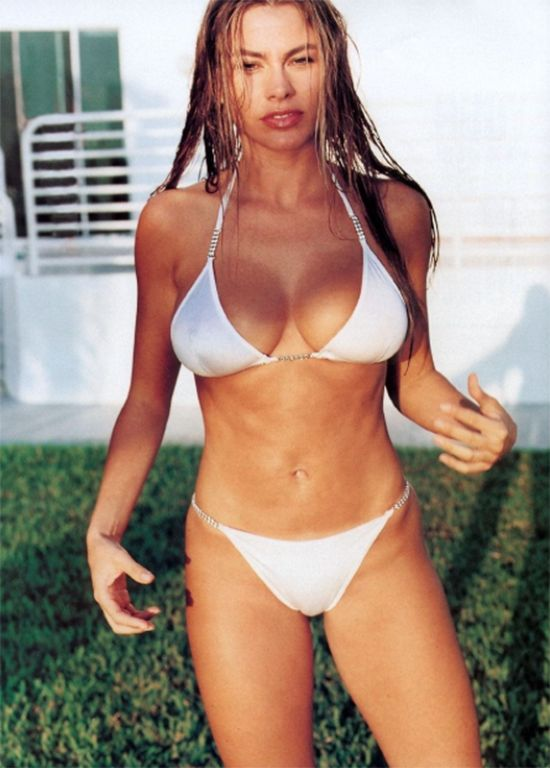 Image result for sofia vergara  sexy