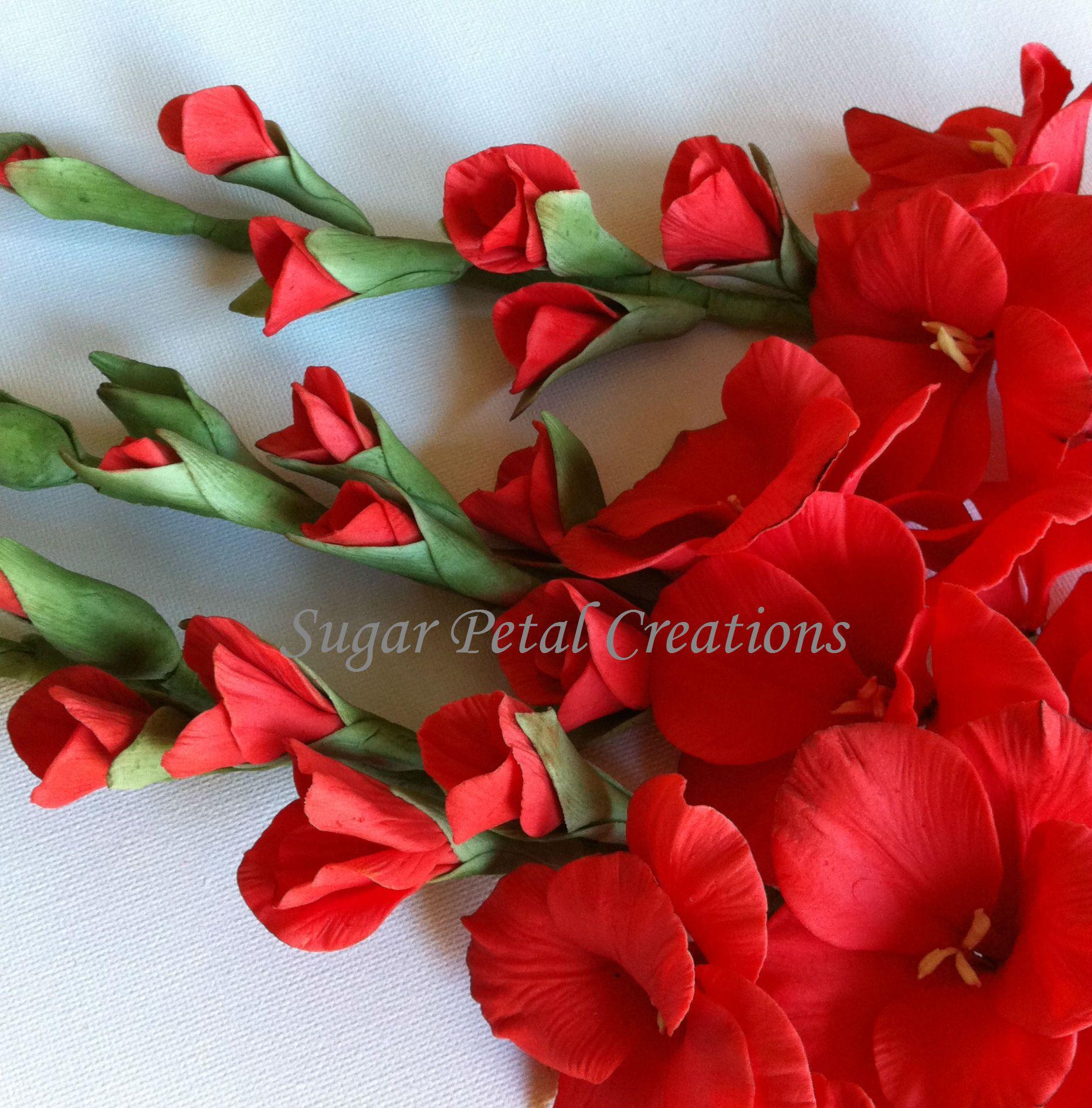 Gumpaste Gladiolus By Sugar Petal Creations Gumpaste Flower