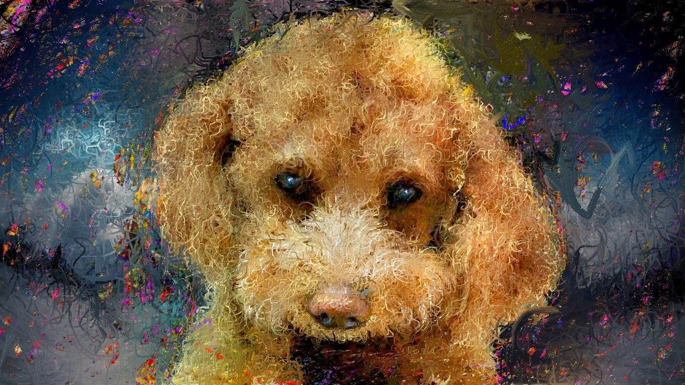 愛犬TiAmoの絵 以前に描いた、お気に入りの作品です。  Bear's Den - Mother http://youtu.be/m5apVsm0Dlk