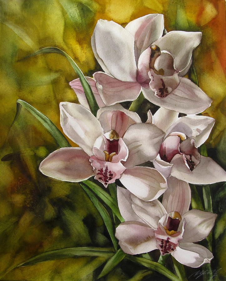 Cymbidium Orchid Watercolor Flowers Tutorial Floral Watercolor Flower Painting