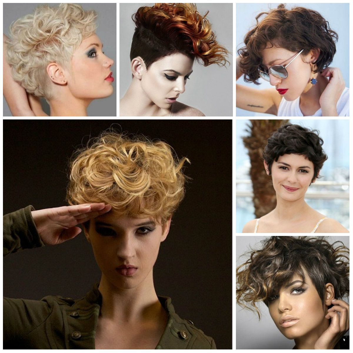 Different Curly Haircuts and the best hairstyle