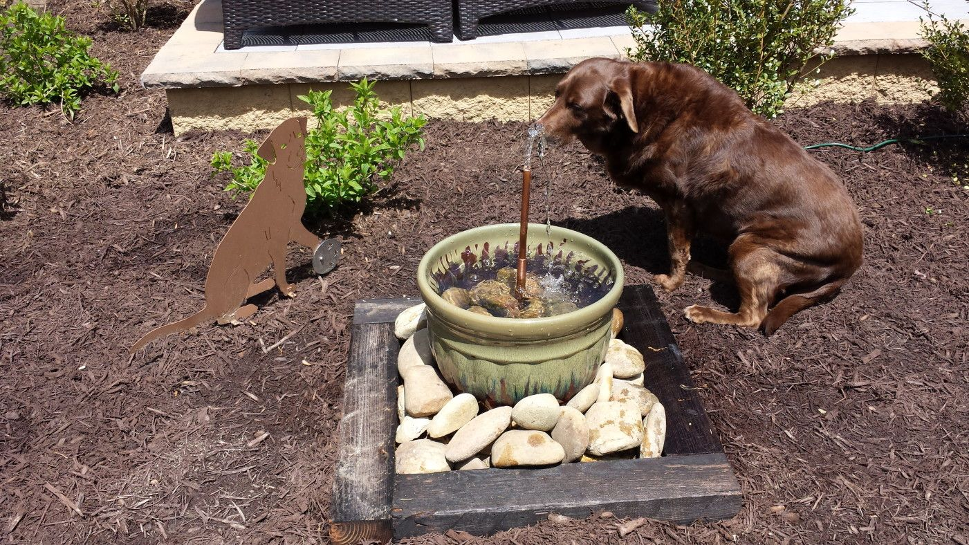 DIY Water Feature   Garden Fountain, No Pit To Dig; For The Dogs