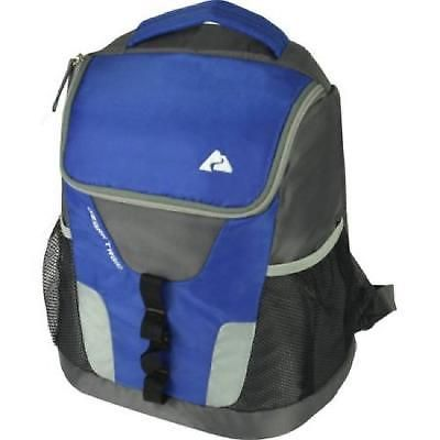 Insulated Backpack Cooler 12 Can Camping Hiking Picnic Padded