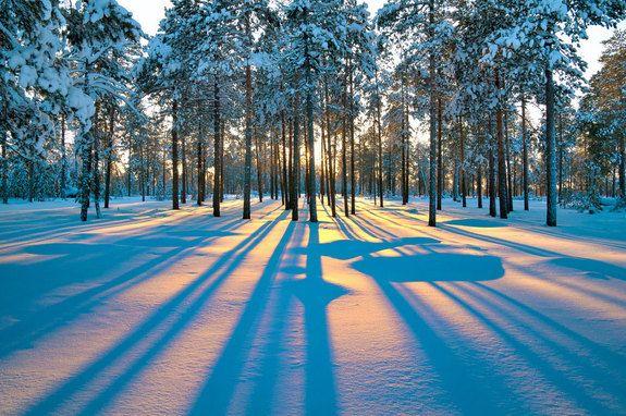 Winter Wonderland Images Of Stunning Snowy Landscapes Winter Sunrise Winter Landscape Winter Sunset