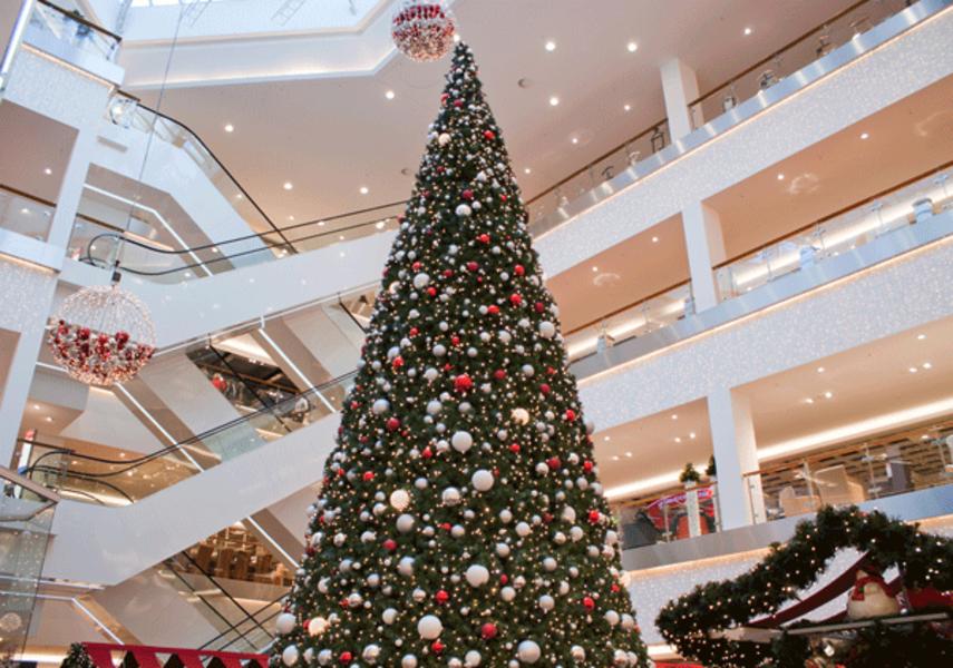 Giant Christmas Trees - MK Illumination