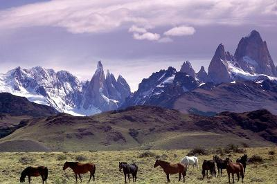 The Longest Mountain Range With The Highest Volcano In The World Formed By Plate Tectonics In 2020 Volunteer Abroad Background Images Horse Wallpaper