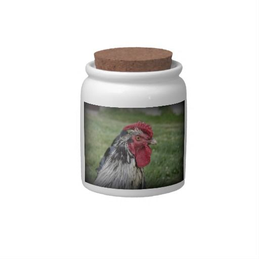 Fowl Face Candy Jars