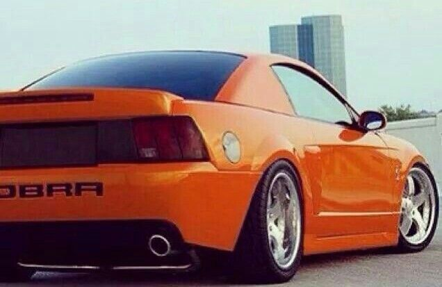 Mustang Ford Cars Competition Mustang Orange