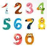 Bird numbers