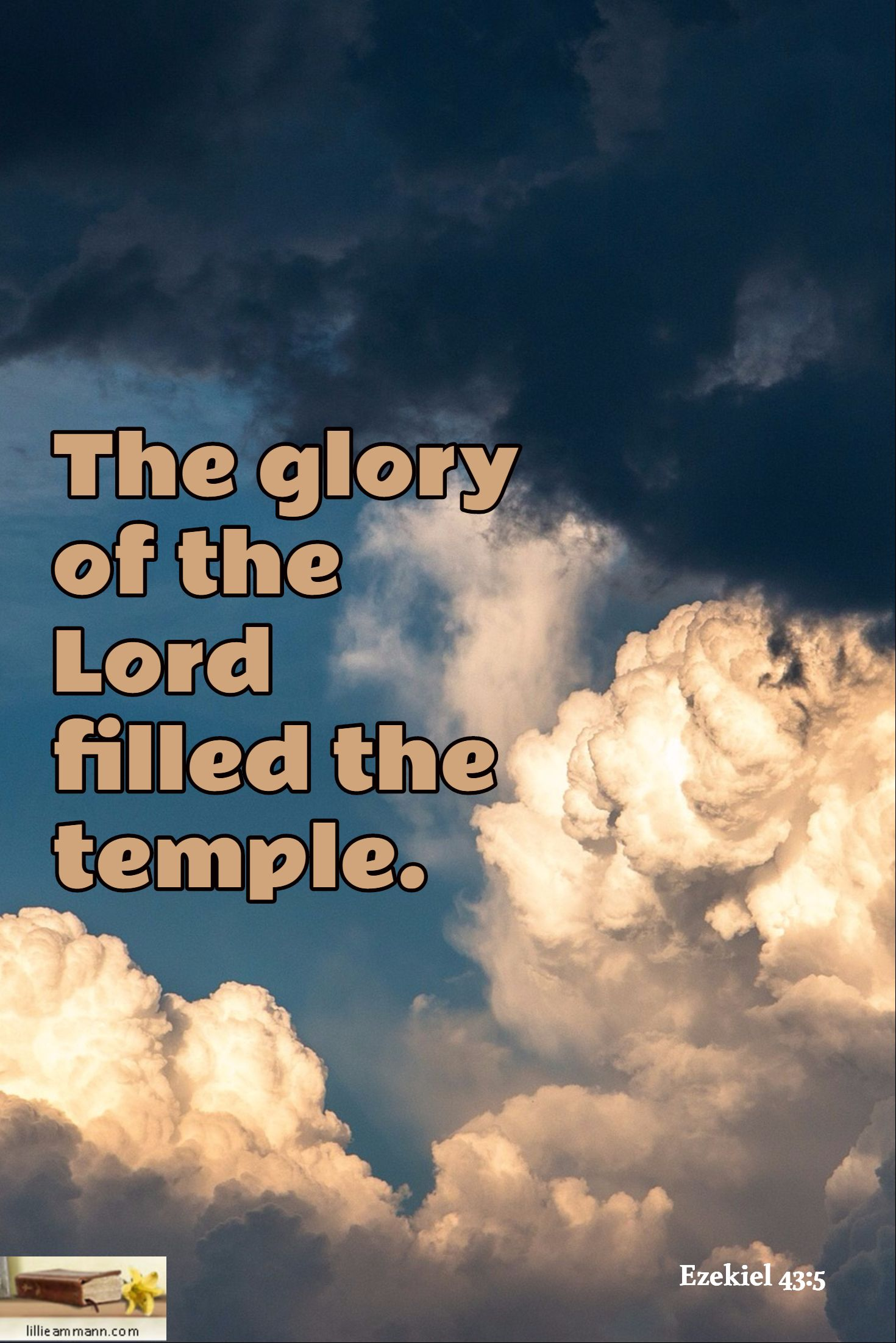 Ezekiel 43 5 The Glory Of The Lord Filled The Temple Scripture Ezekiel Holy Bible