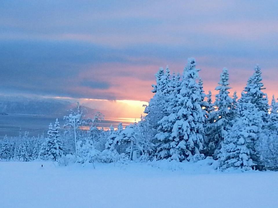 Winter Wonderland Scenes  Snow scene  Winter Wonderland