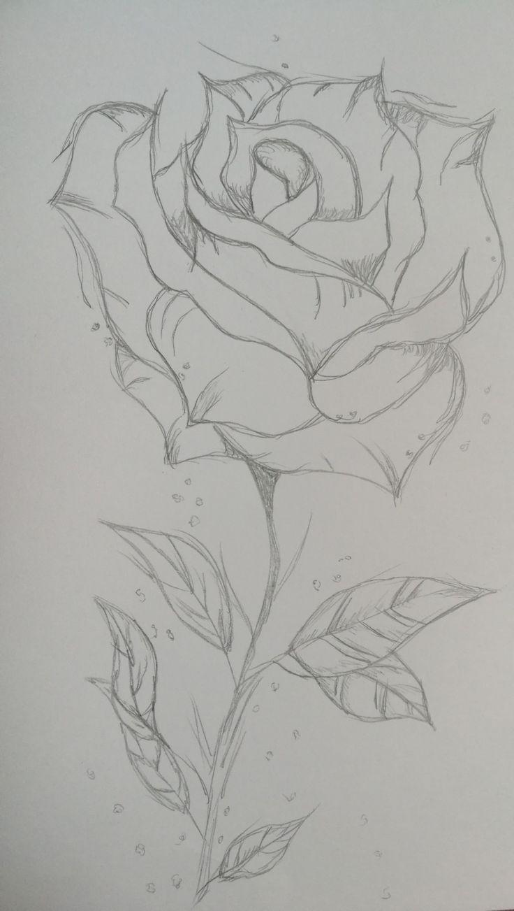 RosesPinks blühen jedes Jahr Sei glücklich mit deinem Stil ... - #Bloo ... - #...