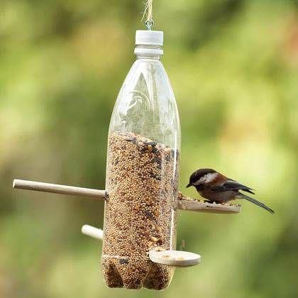 Comedero Para Pájaros Con Una Botella Reciclada Comederos Para Pájaros Reciclaje De Botellas Plasticas Comederos Para Aves