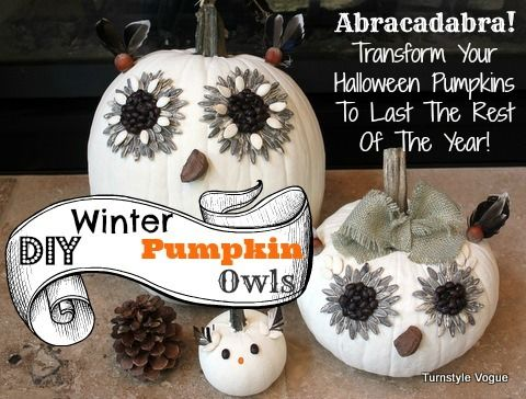 DIY Winter Pumpkin Owls - Transform Pumpkins Into Owls ...