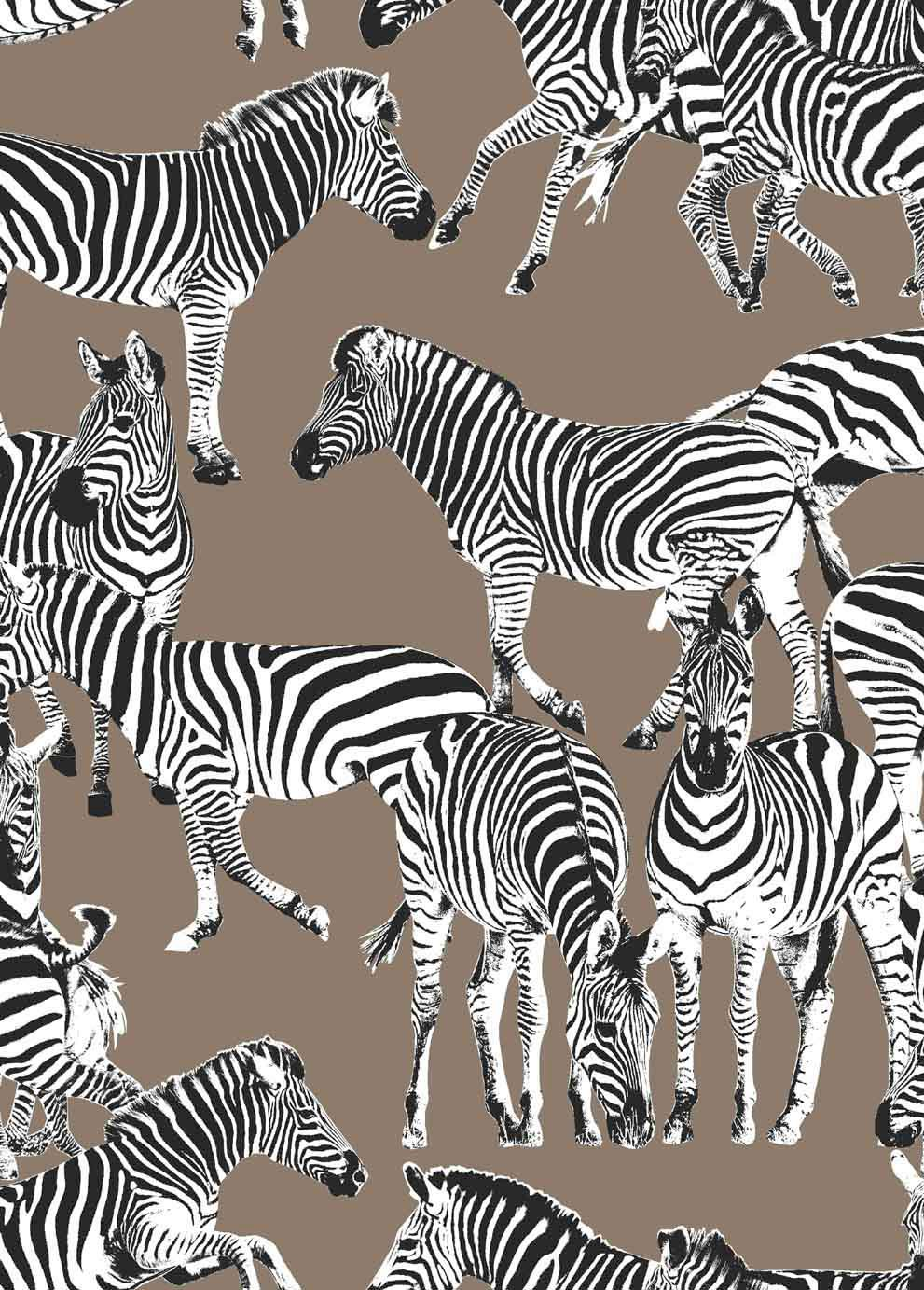 Zebras Chocolate Mousse Wallpaper By Vilber Zebra Wallpaper Animal Print Wallpaper Zebras