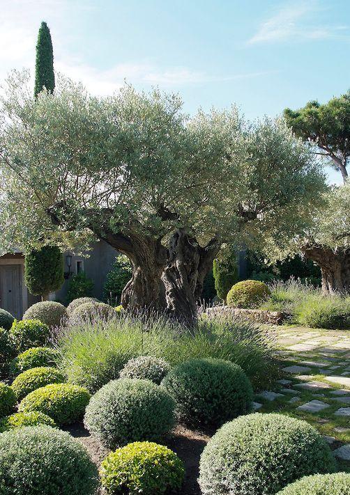 eye-catching-mediterranean-garden-decor-ideas-6 | garden and outdoor ...
