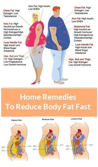 Fat loss and maintain muscle photo 1