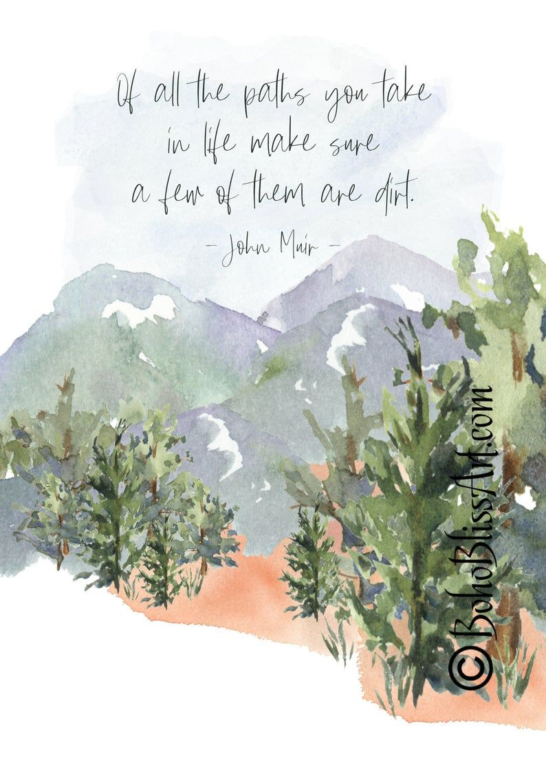 John Muir Quote: Of all the paths you take in life