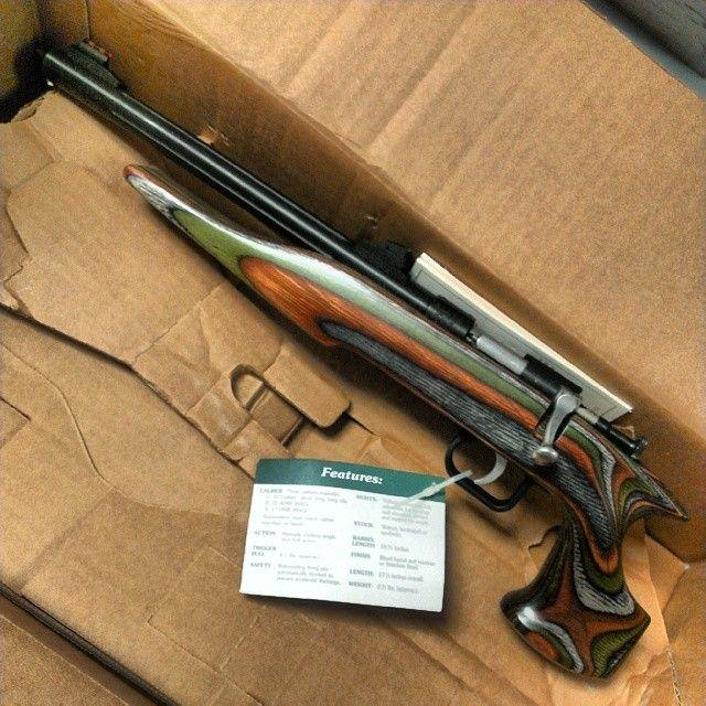 Pin by RAE Industries on chipmunk rifle | Guns, Hand guns, Military