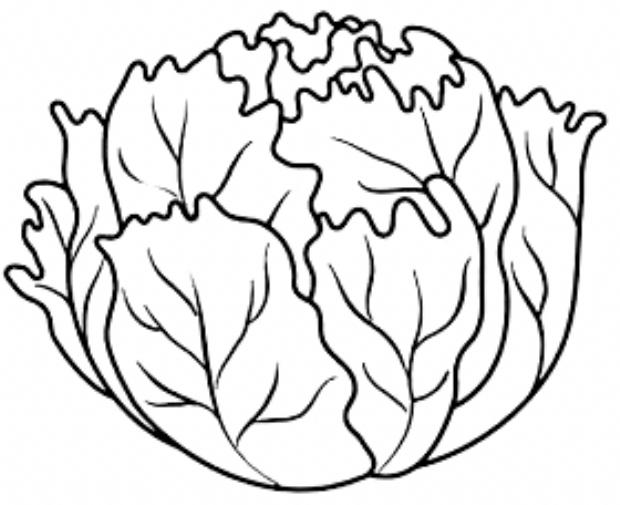 Pin By Helenaramona Paz On Szinezo In 2020 Vegetable Coloring Pages Fruit Coloring Pages Coloring Pages