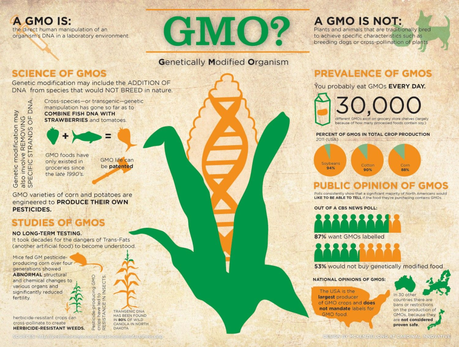 what is gmo genetically modified organism infographic [ 1500 x 1135 Pixel ]
