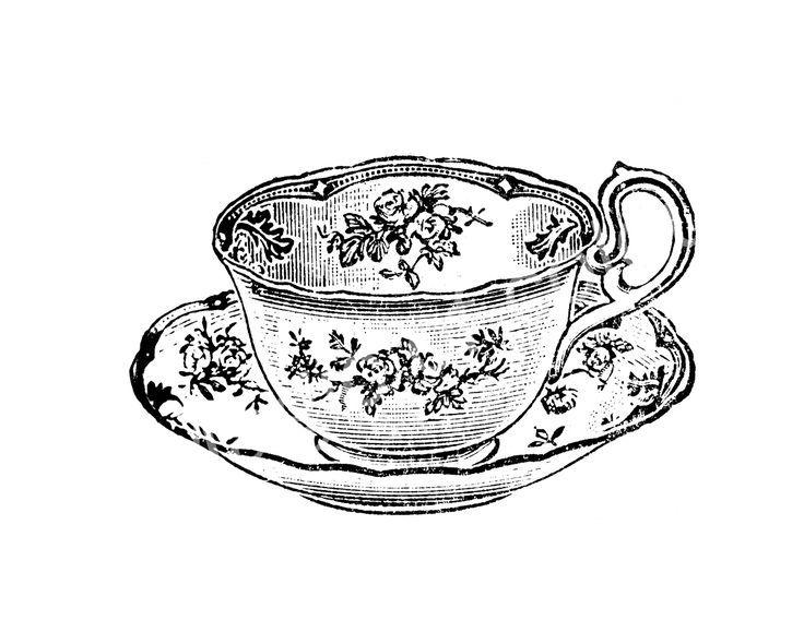 Teacup Saucer Drawing Alice In Wonderland Teacup Sketch