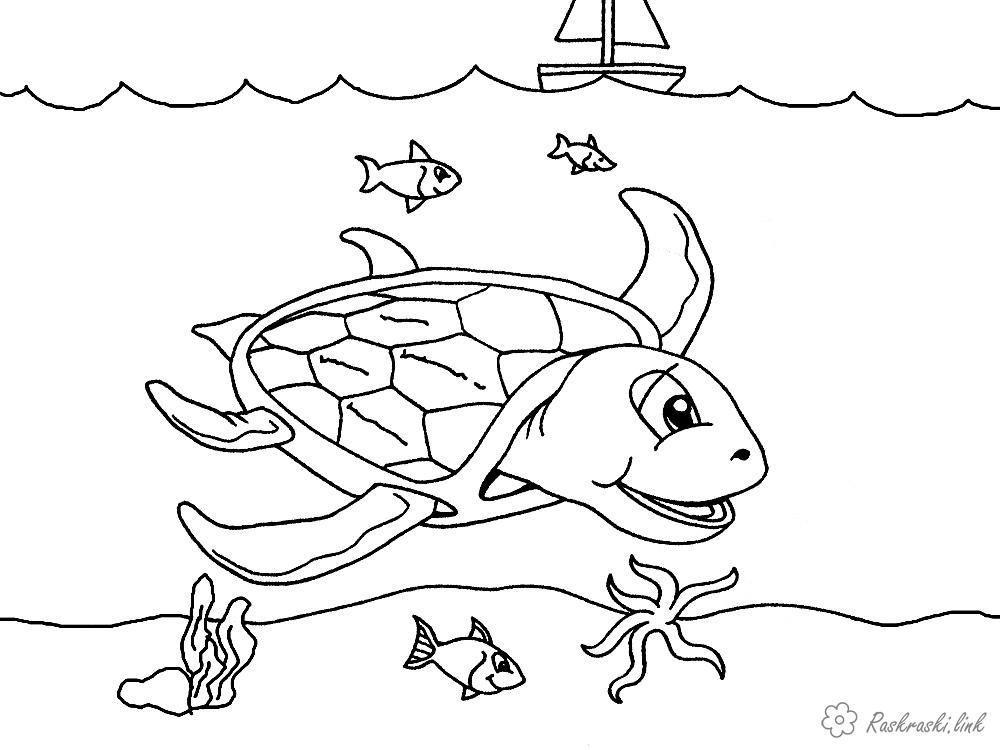 Раскраски Подводный мир раскраска, морская черепаха, рыбки ...