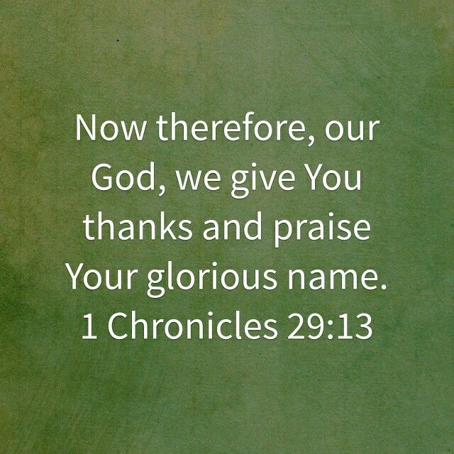 1 Chronicles 29:13 HCSB