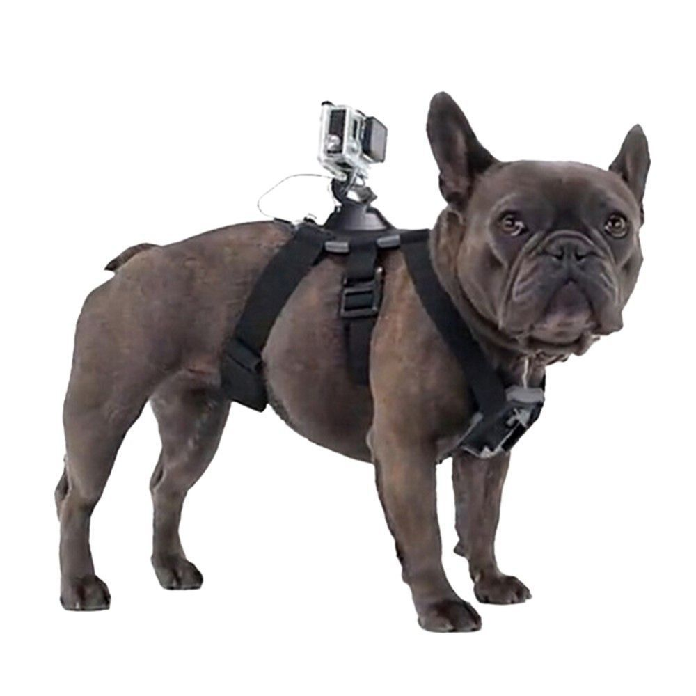 Go Pro Accessories Adjustable Dog Harness Chest Strap For Gopro