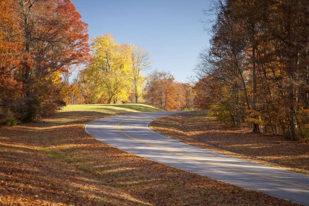 Mississippi's fall colors are best seen from the scenic Natchez Trace Parkway.For more information, ... - Getty Images