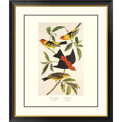 Louisiana Tanager, Scarlet Tanager By John James Audubon, 40 X 34-Inch Wall Art With Decorative Border