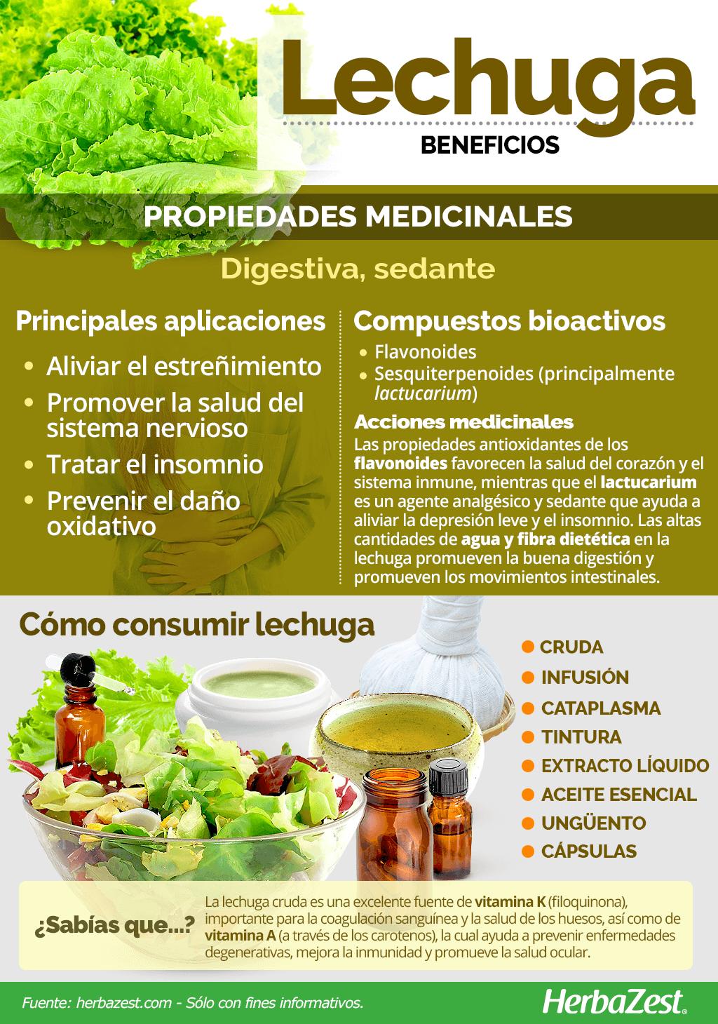 Lechuga Herbazest Frutas Y Verduras Beneficios Alimentos Saludables Beneficios De La Lechuga