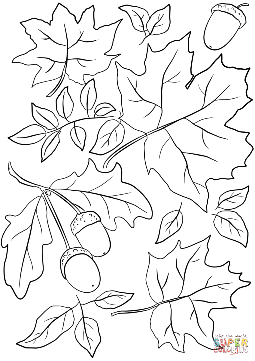 Autumn Leaves and Acorns coloring page from Fall category