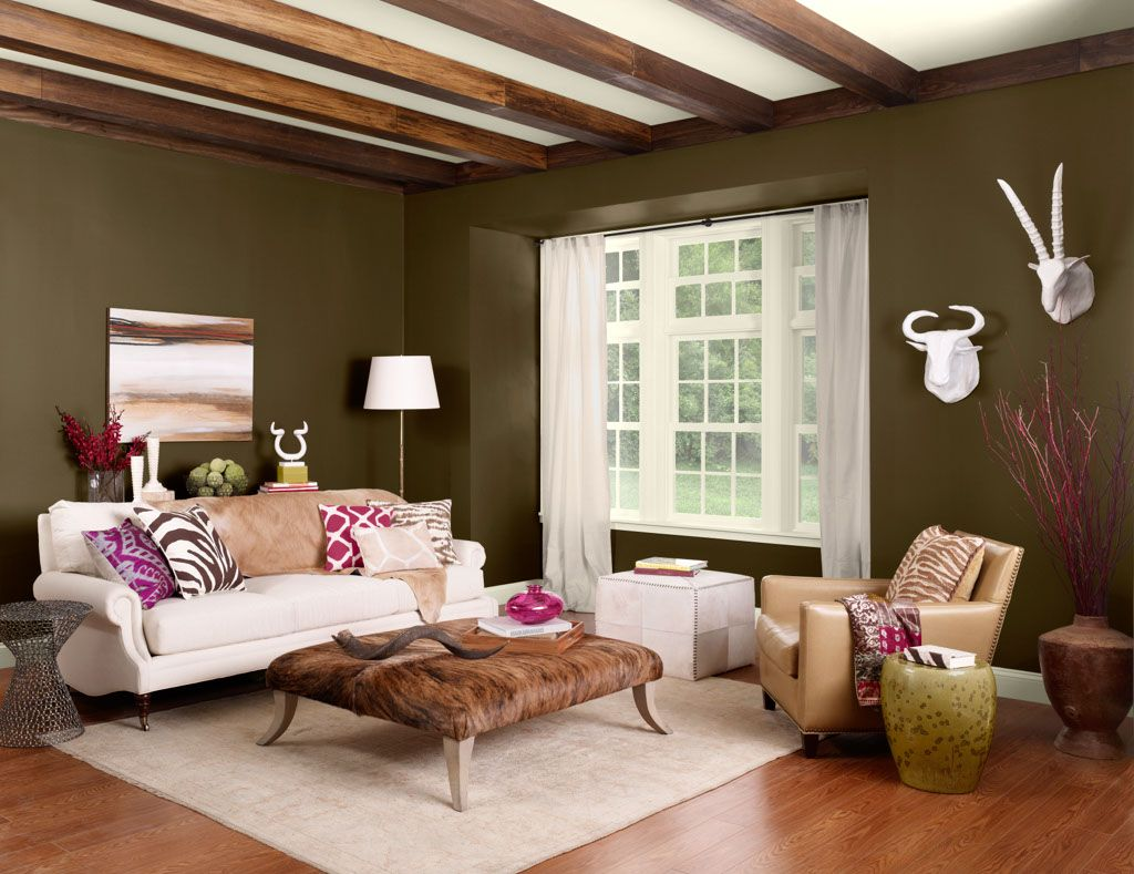 Color Palettes Benjamin Moore Living Room Paint Paint Colors For Living Room Living Room Designs Living room colorful canopy