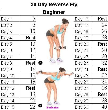 fitness challenge 30 day reverse fly  workout challenge