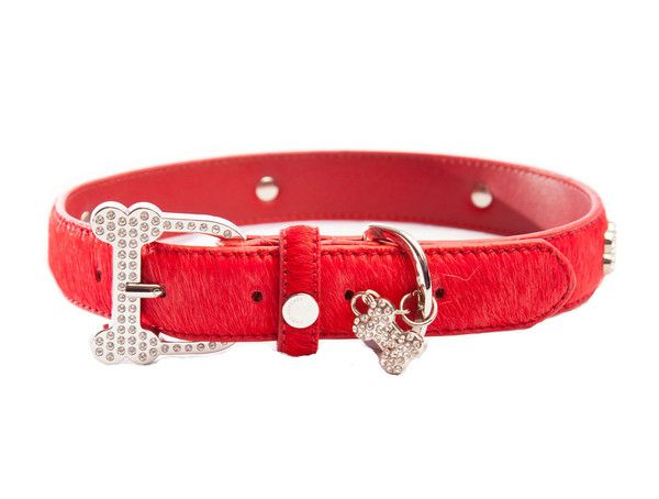 This luxurious dog collar by Chrome Bones features soft calf hair on genuine leather with a sparkling rhinestone buckle and bling bones surrounding the entire collar. Rhinestone bone charm attached.
