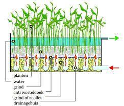 Afbeeldingsresultaat voor plantenfilter