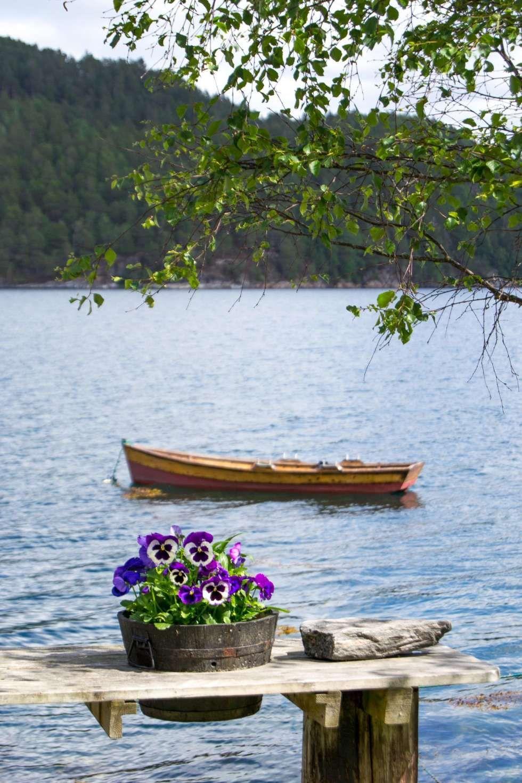 CANOTAJE: Hay muchos viajes en barco para recoger trozos de madera o para pescar un poco en la cena.