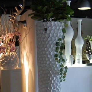 Showroom Oisterwijk