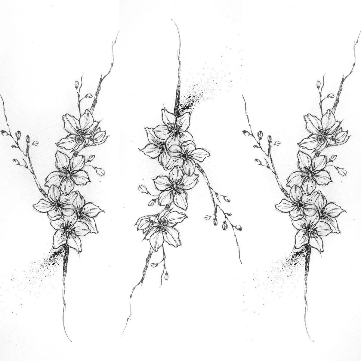 Cherry Blossoms Cherry Blossom Drawing Blossom Tattoo Cherry Blossom Tattoo
