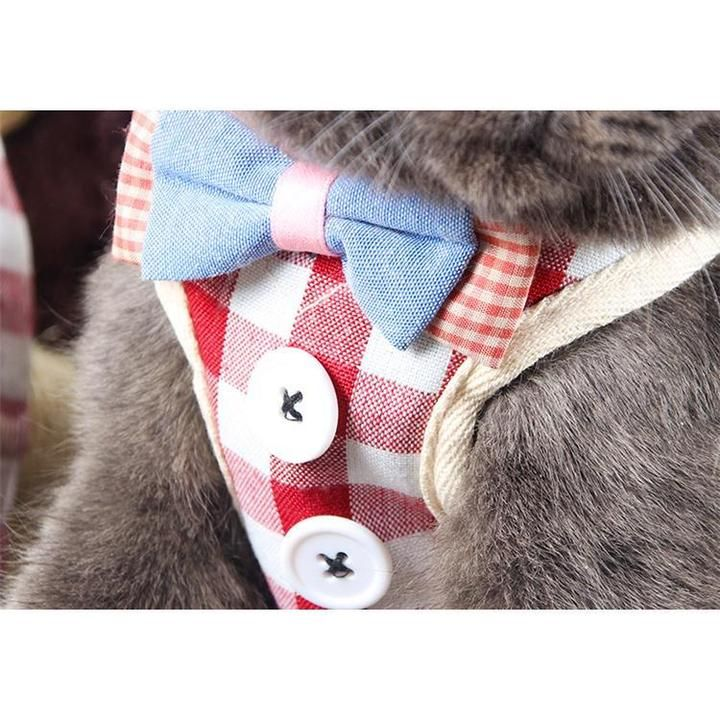 Button down cat harness cat harness harness cats