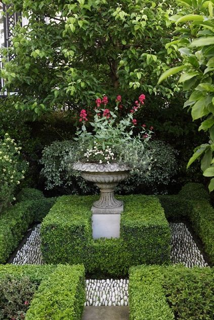 small courtyard boxwood garden