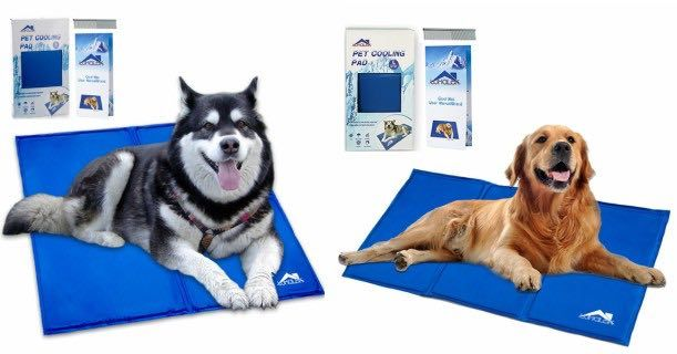 Amazon Extra Large Whalek Dog Or Cat Cooling Mat Only 27 99