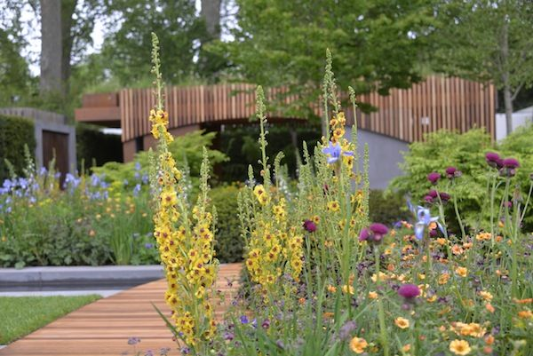 The Homebase Garden Click To Read Article And To See Plants List