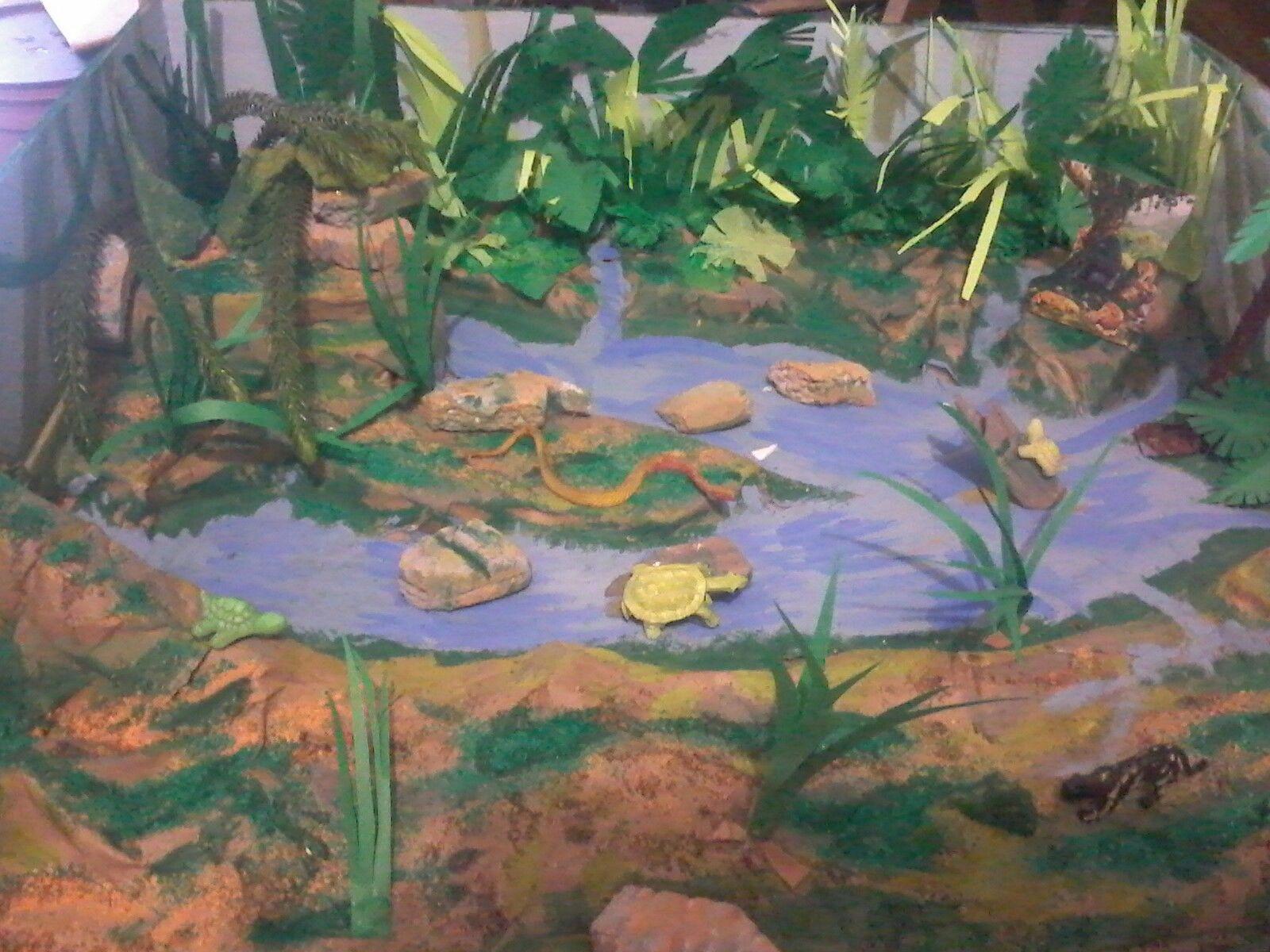 Maqueta Selva Humeda Paraisos En La Tierra Selva Humeda
