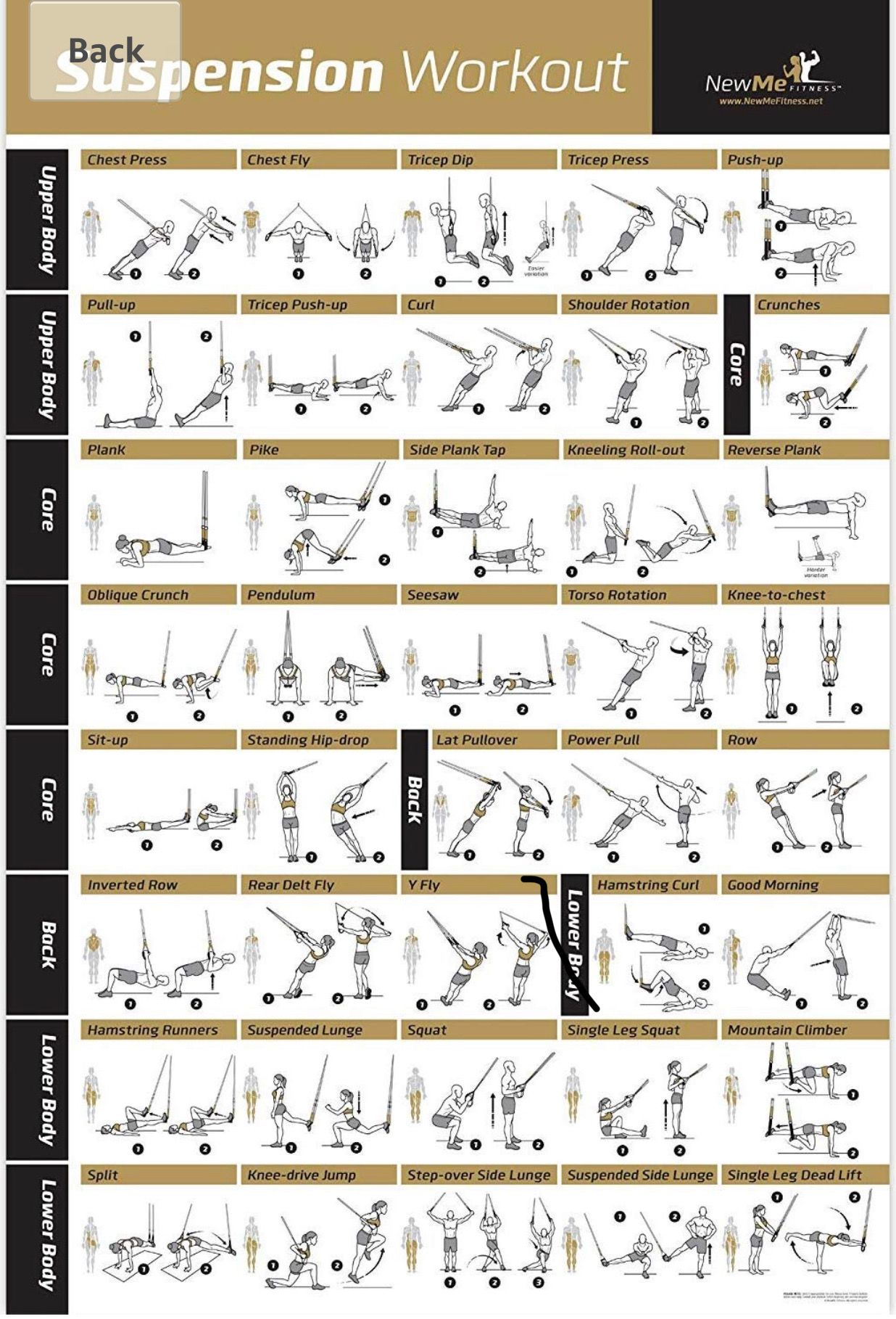 Pin By Rajesh Nair On Fitness Trx Workouts Resistance Workout