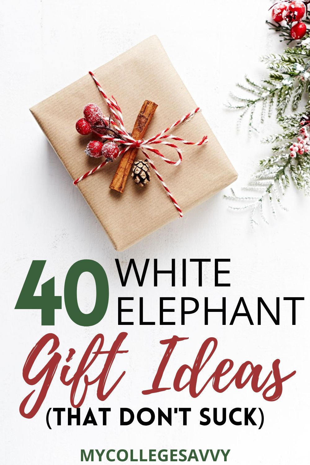 40 White Elephant Gift Ideas That Everyone Fight Over My College Savvy In 2020 White Elephant Gifts Elephant Gifts Christmas Gifts For Coworkers