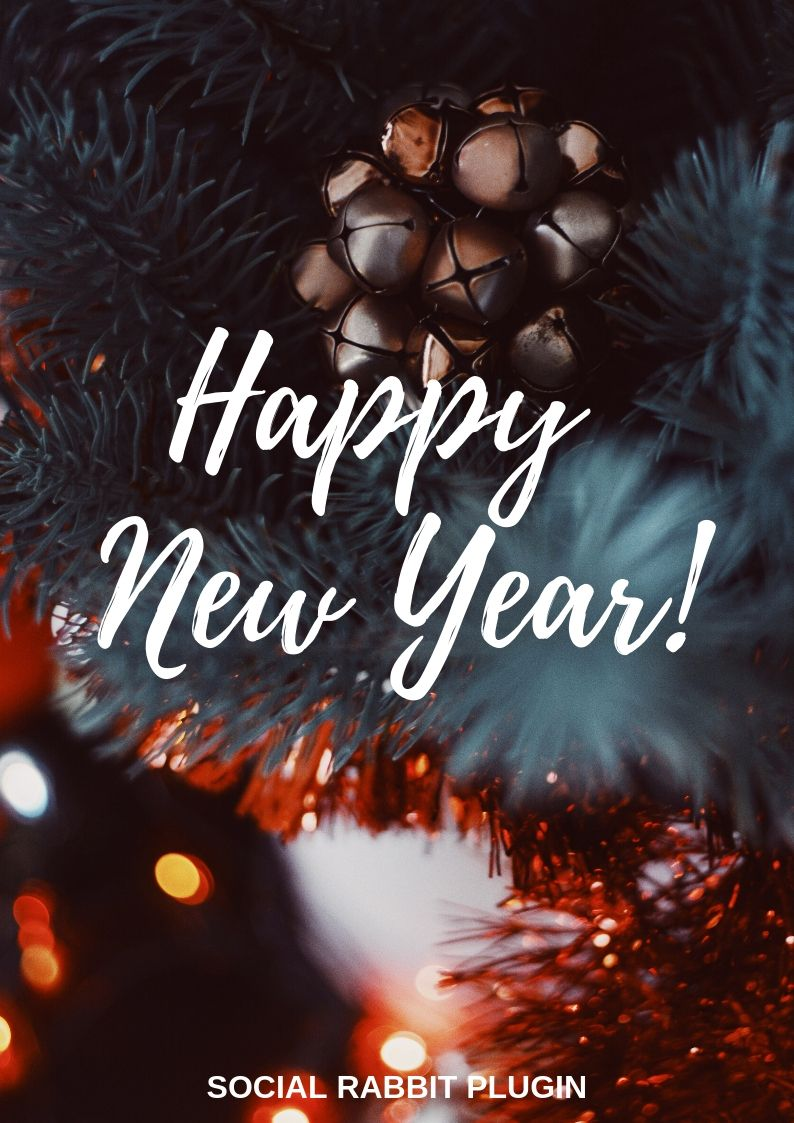 Happy New Year from the Social Rabbit team!  Thank you for joining us this year! May all the expectations and goals for each day be fulfilled on the day itself! We will be here for you to help you promote your business on social networks even more successfully in 2019.