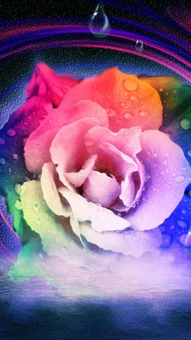 20 Fresco Colorato Creativo E Bello Iphone 5 Sfondi Bella