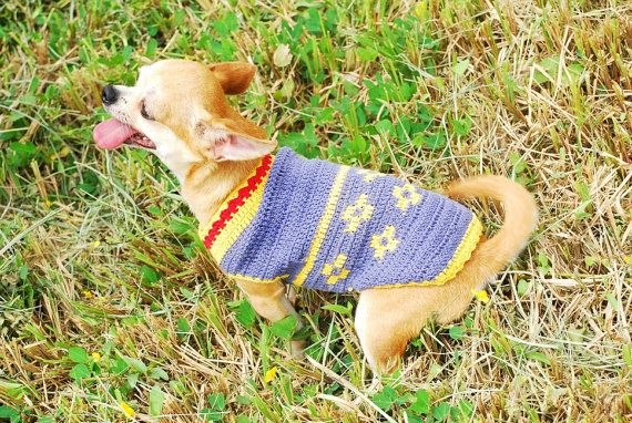 Blue Flower Crochet Dog Clothes Chihuahua Yorkie Sweater Puppy ...